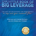 The Little Book of Big Leverage